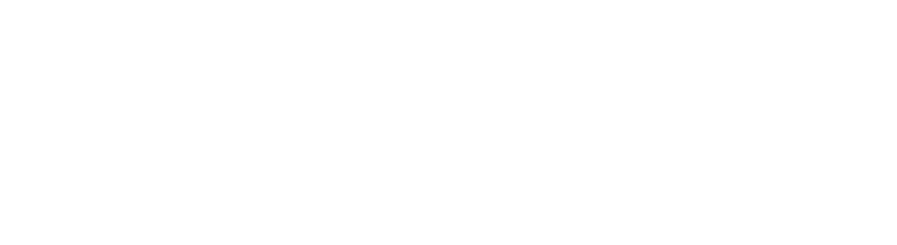 The Childrens Activity Business