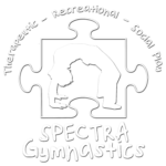 Spectra Gymnastics Smart Moves Special Need Program